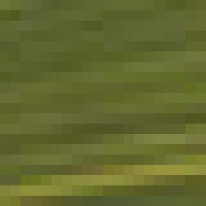 צבע נוזלי - GOLDEN Fluid Colors - fl-green-gold