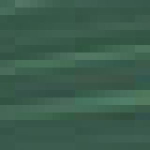 צבע נוזלי - GOLDEN Fluid Colors - fl-permanent-green-light